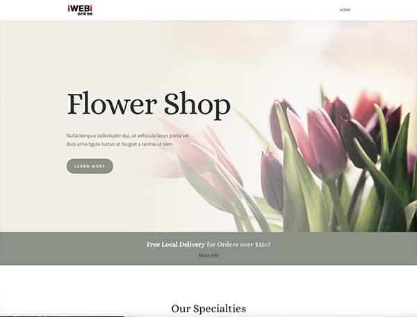 Landing-Page-iwebi.online-exemle-9